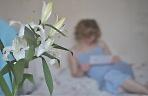 Белые лилии...... )