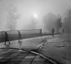 фото Владимира Куличенко