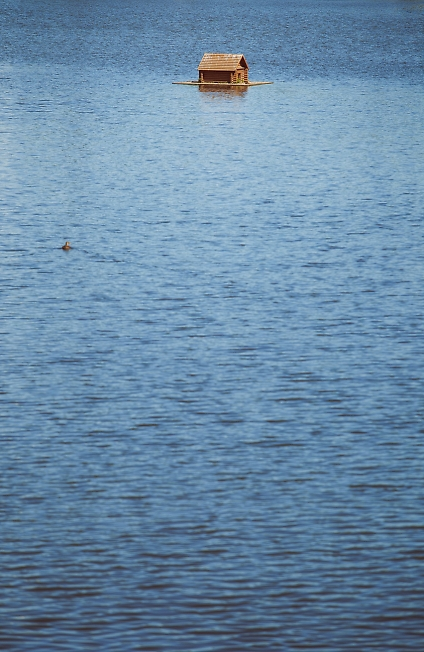 июль 2014, келарский пруд