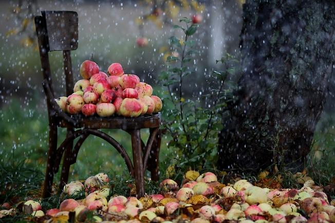Дождик из лейки