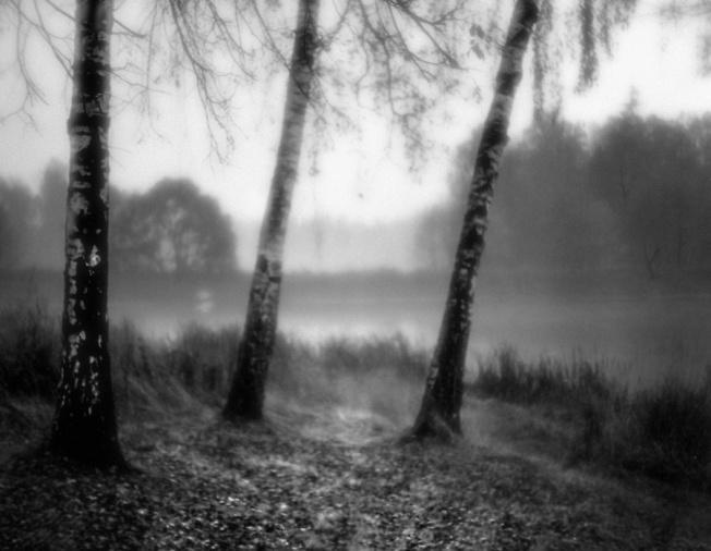 Осень на скитстких прудах