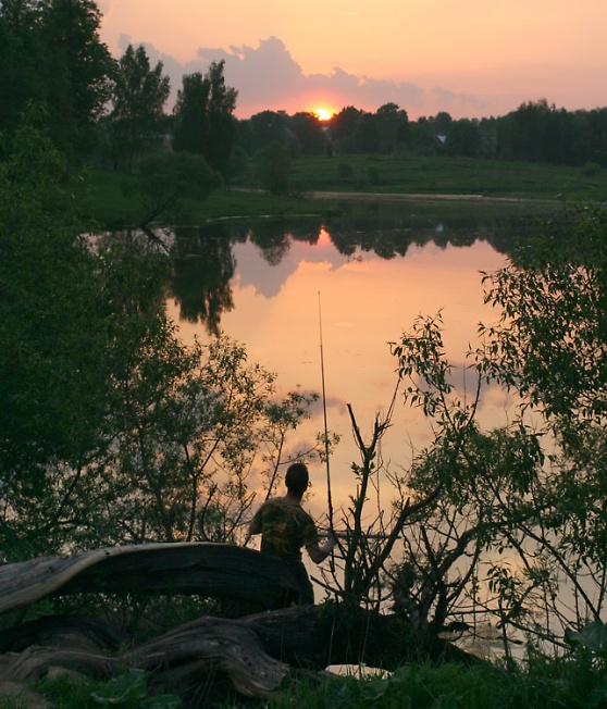 Рыбак на дереве