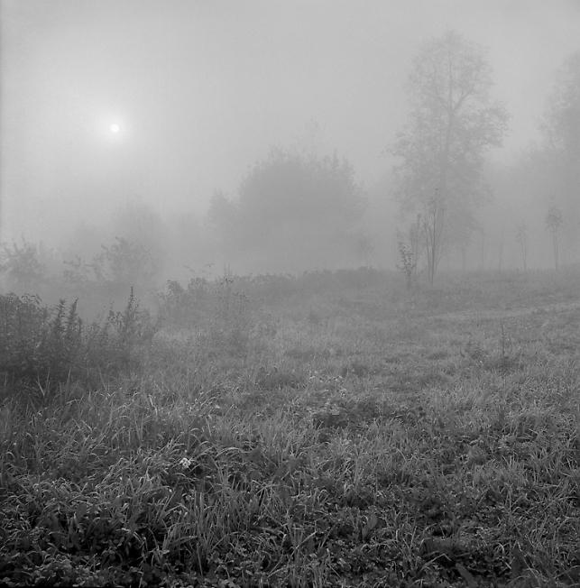 Утро  на Блинной горе.