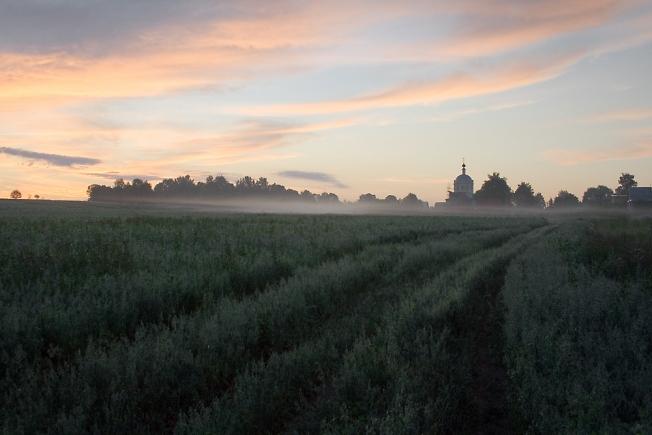 Утро на полях-3