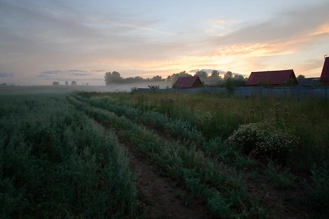 Утро на полях-4