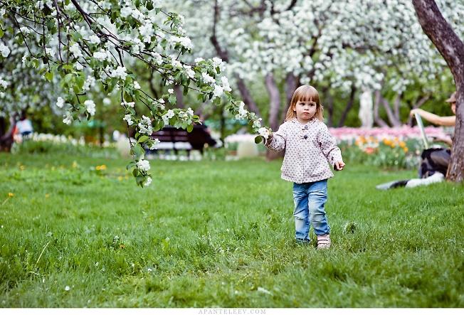 Девочка в яблоневом саду