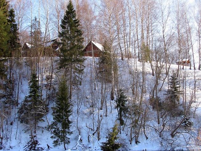 Берег великой русской реки Вори