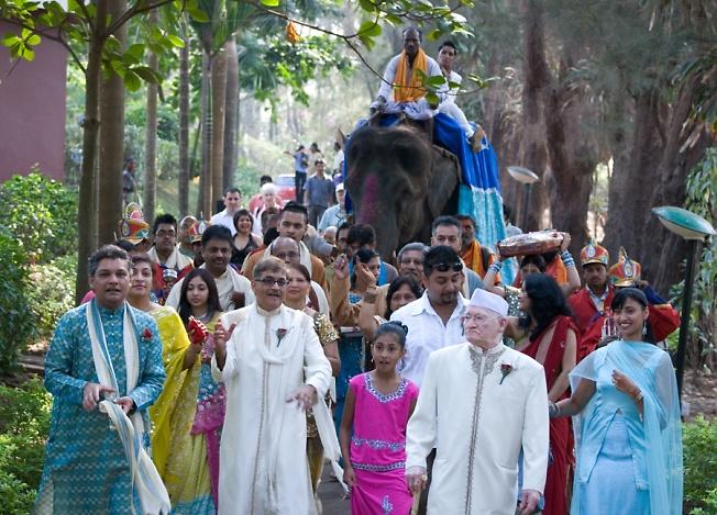 Индийская свадьба (Жених на слоне)
