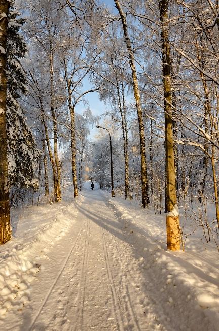 Мороз и солнце; день чудесный!...
