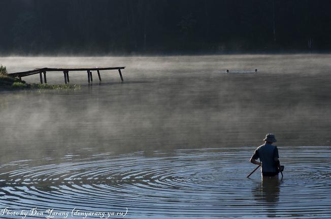 На озере утро