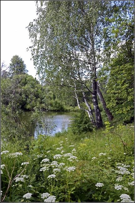 В окрестностях Черниговского скита