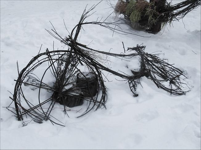 Забытый велосипед