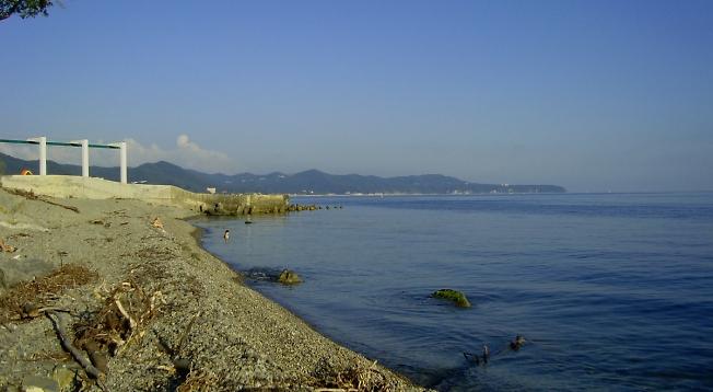 Берег Черного моря