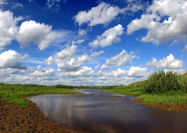 Река Сойма