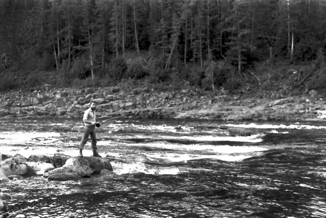 Рыбалка на Таймуре