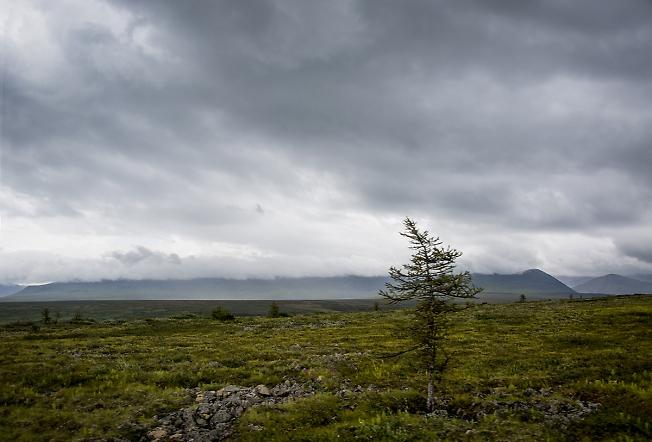 Длинная гора