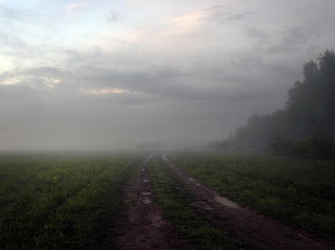 Туманный просёлок