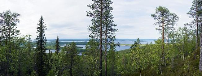 Нотозеро. Вид с Ивановой горы 2