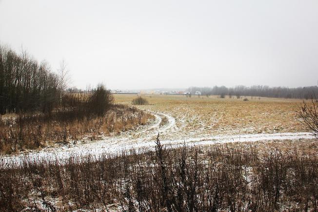 Шубинское поле. Декабрь