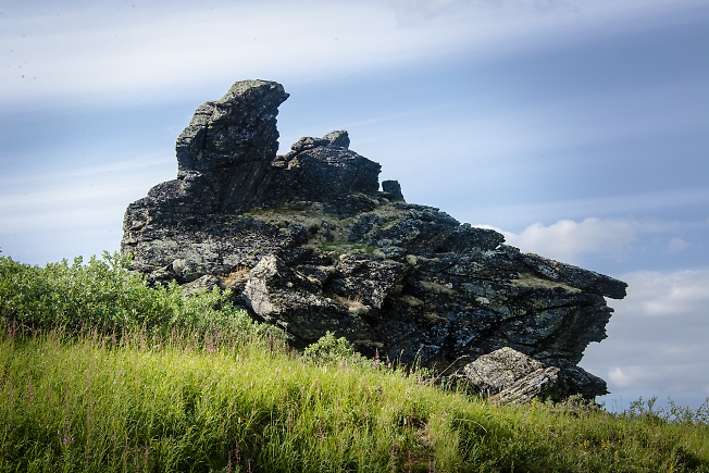 Каменная птица