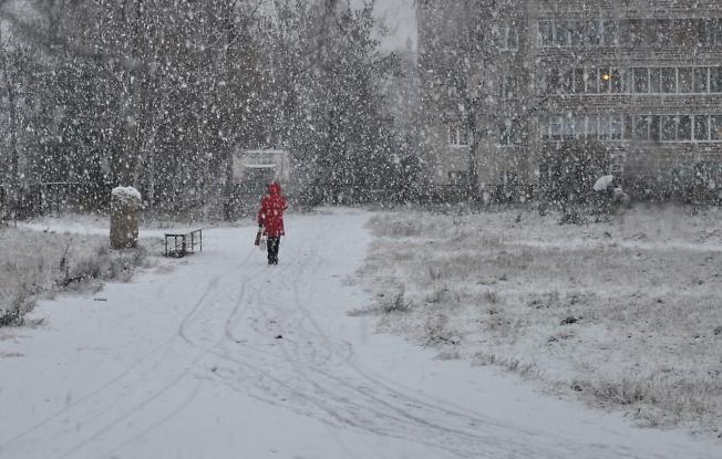 Ноябрьский снегопад...