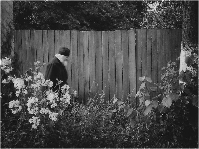 В огороде бузина...