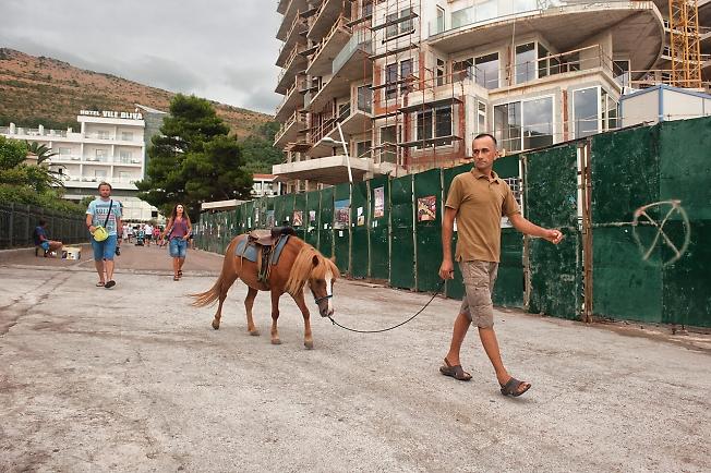 Лошадка, которая не хотела катать малышей и фотографироваться на пляже