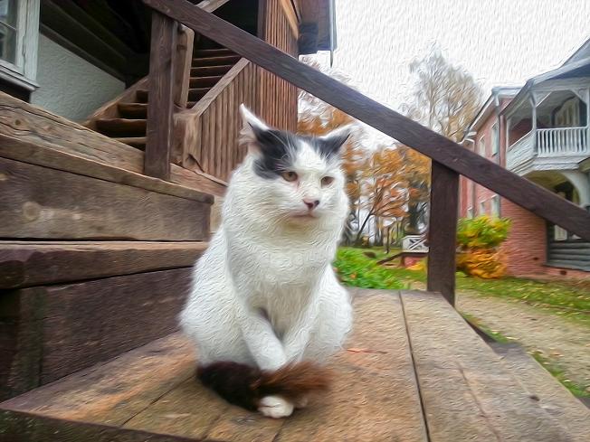 Грустная кошка на ступенях в усадьбе Мураново