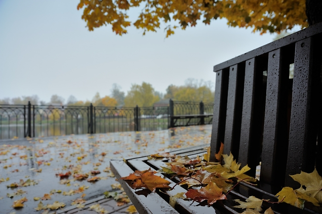 Осень в Посаде
