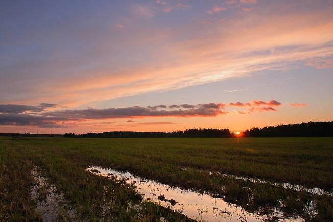 Закат на подмоченном поле