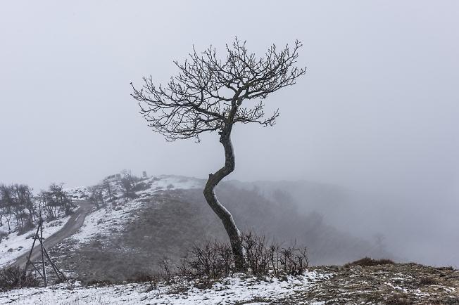 """""""Когда в горах идет снег"""""""