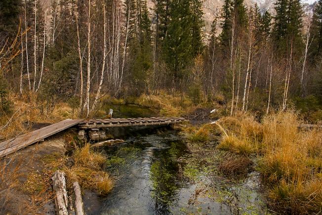 Алтайские тропы