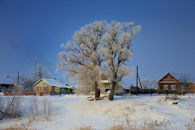 В деревне зимой.....