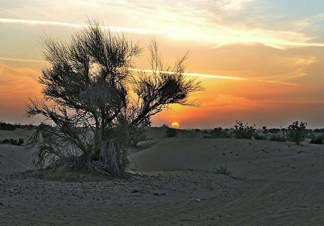 Закат в пустыне зимой