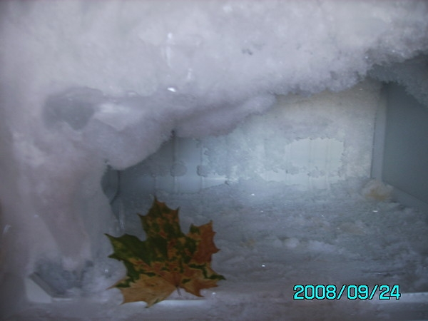 В ледовом плену.