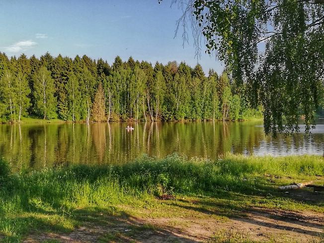 Лесное озеро*
