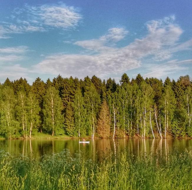 Лесное озеро***