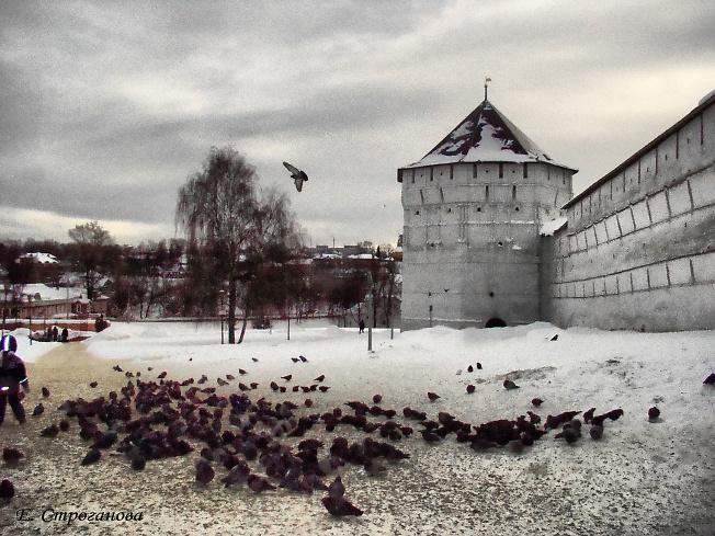 Зима,Лавра,голуби...
