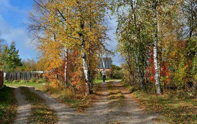 Прогулки по осенним дорожкам