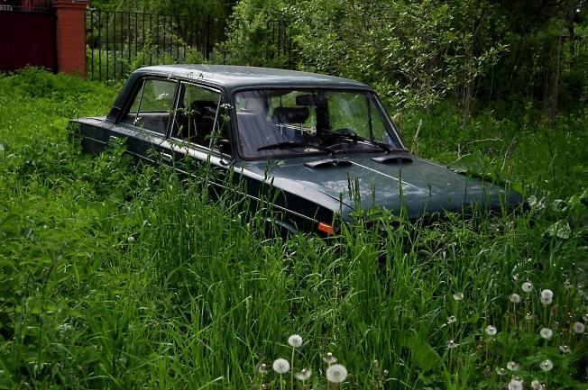 Парковка в траве
