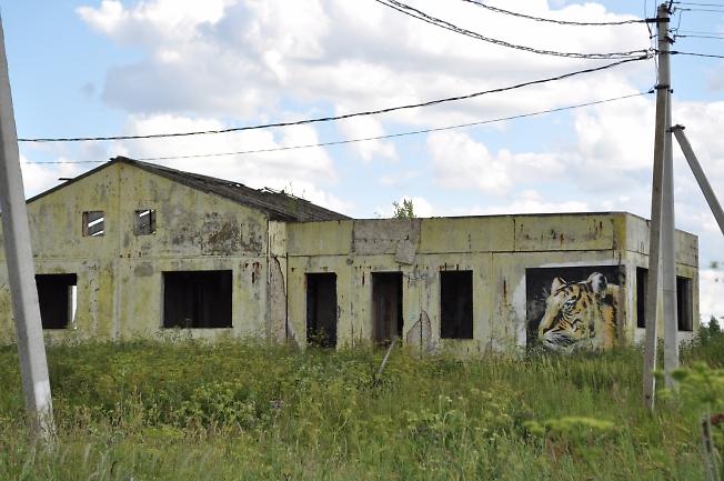 Странное здание в Озерецком