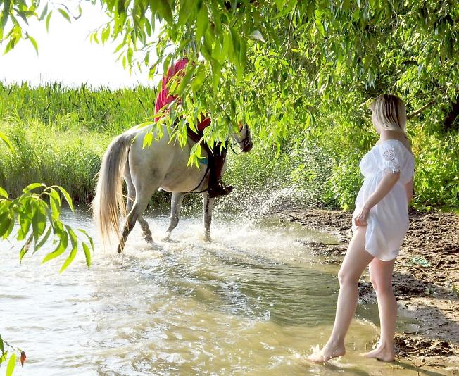 Вышел конь из воды