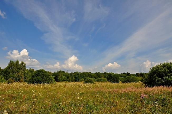 Природный пейзаж - летнее