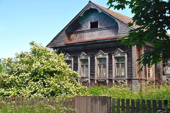 Оставленный дом и большой куст жасмина