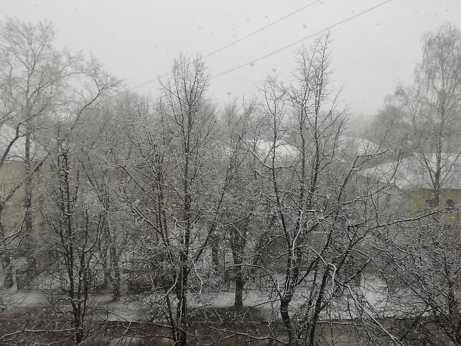 Серое, снегопад в конце апреля