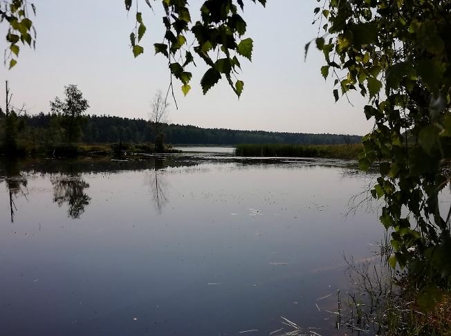 Озеро жарким днем