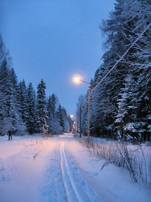 Лыжная трасса на п. Ферма