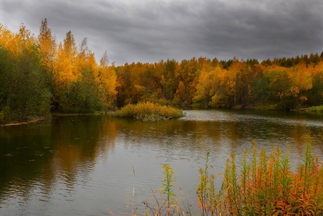 Хмурая осень