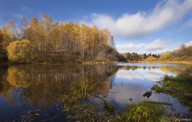 Осень на Вифанских прудах