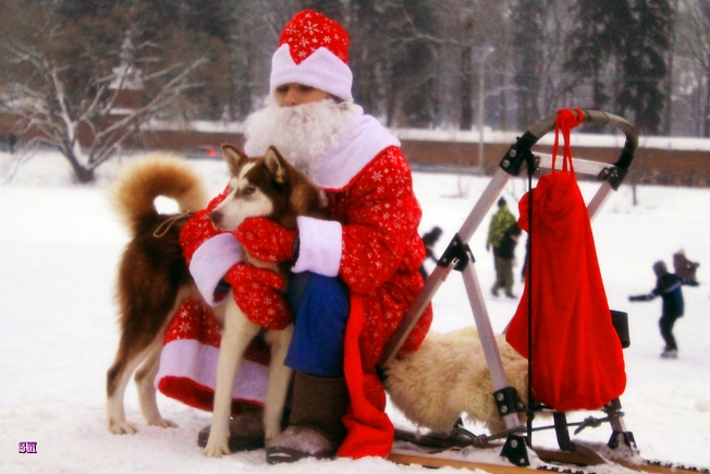 Дедушка Мороз и его собака